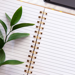 A desk seen from above with an open lined notebook, a branch with leaves and a mobile phone