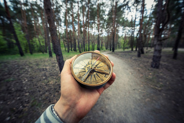 Wall Mural - Compass in the hand against forest road. Explorer and travel background.