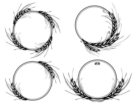 Rye, barley or wheat round frames or wreath on white background. Black and white hand drawn set design for cooking, bakery, tags or labels. JPG include isolated path