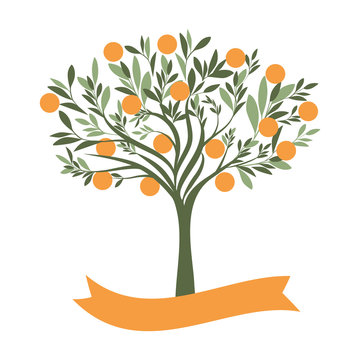 Vector illustration of orange tree with blank label on white background