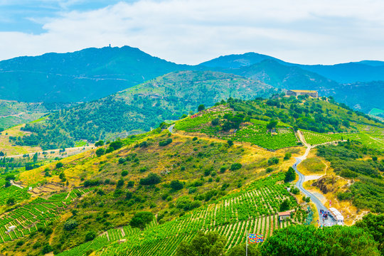 Pyrenees Orientales near Collioure in France