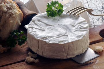 Camembert  Brie קממבר カマンベールチーズ  cheese Καμαμπέρ                                       ft81058436 Камамбер کامامبر