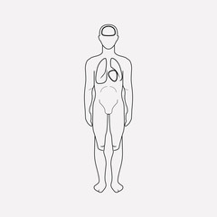 Human body icon line element. Vector illustration of human body icon line isolated on clean background for your web mobile app logo design.