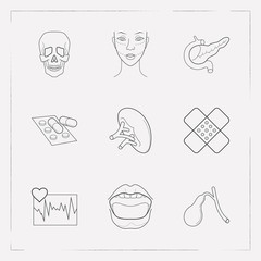 Set of anatomical icons line style symbols with mouth, skull, cardiogram and other icons for your web mobile app logo design.