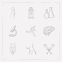 Set of anatomical icons line style symbols with microscope, chemical flask, sport and other icons for your web mobile app logo design.