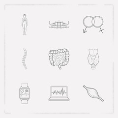 Set of anatomical icons line style symbols with heartbeat tracker app, spine, woman body and other icons for your web mobile app logo design.