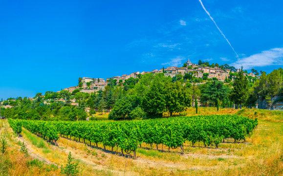 Bonnieux village in France viewed behind vineyards