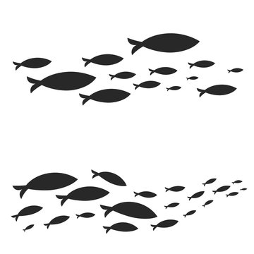 Different vector sets of fish shoals swimming isolated on white background