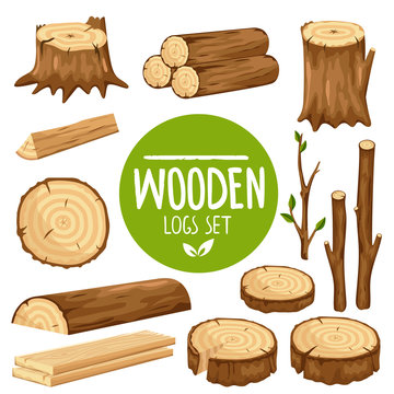 Colorful vector set of various wood logs and stubs isolated on white background