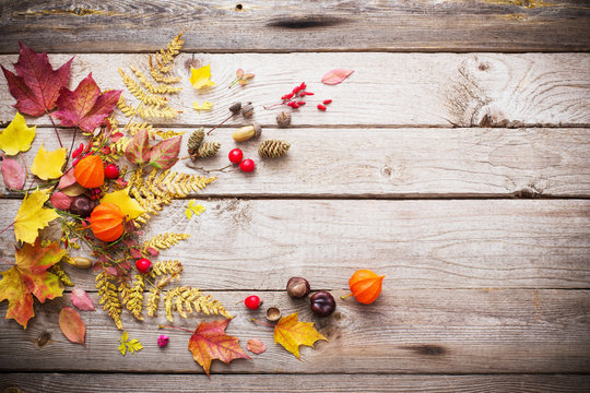 red berriaes and  autumn leaves on old wooden background