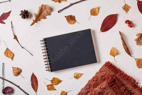 Autumn composition: fallen leaves, dry plants  scarf