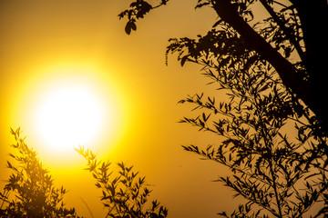 sunrise and its colors