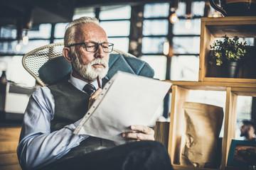 Senior businessman at his office. Portrait.