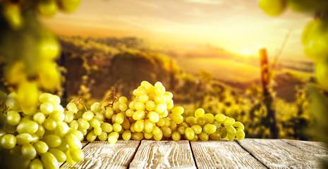 Autumn photo of Tuscany and fresh grapes fruits.  Fototapete