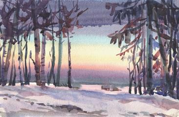 winter evening, sunset sky, snow trees