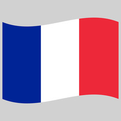 flag  france on gray background vector illustration flat