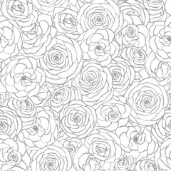 Vector seamless pattern with rose flowers line art on the white background. Hand drawn floral repeat ornament of blossoms in sketch style. Usable for coloring books.