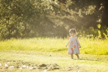 Cute little girl in a dress playing in the grass at sunset.
