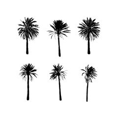 Tropical Palm Tree. Exotic summer fashion design. Travel and vacation symbol