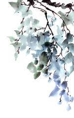 Green tree foliage