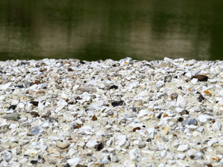 Gravel shore background. Small stones on the coast, selective focus