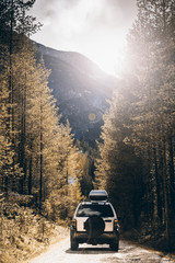 Off road car on dirt road in forest at autumn