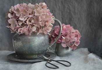 Vintage style photograph of dried pink hydrangea in pewter pitchers on gray
