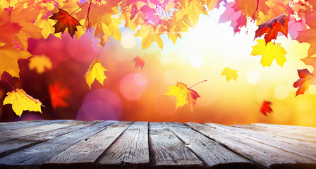 Autumn Colorful Background With Leaves In Sunlight