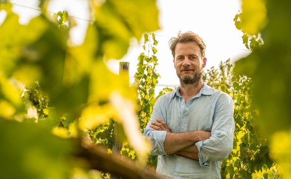 Farmer standing proud in front of a vineyard - agriculture
