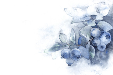soft blue watercolor ombre background texture with blueberries