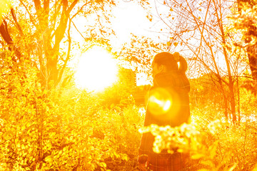 Autumn woman in beautiful autumn yellow sun flare nature with falling leaves over forest background.