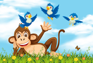 Happy monkey and bird in nature