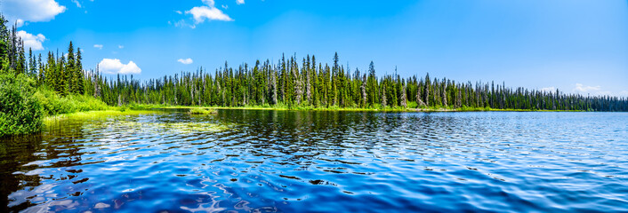 The clear water of McGillivray Lake, a high alpine lake near the alpine village of Sun Peaks in the Shuswap Highlands of the central Okanagen in British Columbia, Canada Wall mural