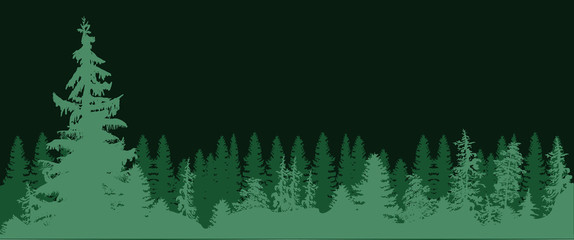 high fir trees forest isolated on dark green