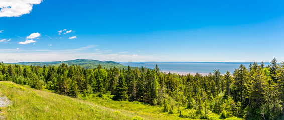 Wall Mural - Panoramic view from the outlook near Bay of Fundy in Canada