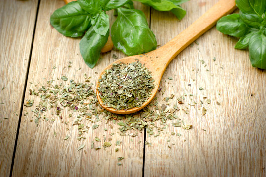 dry, dried and fresh organic basil in spoon on table