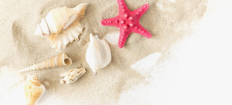 Travel and vacation. Vacation season. Summer holiday background. Sea card with sand, shells and starfish on white background. Flat lay, top view, copy space. banner