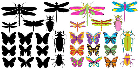 isolated, bright insects, butterflies, beetles, dragonflies, set