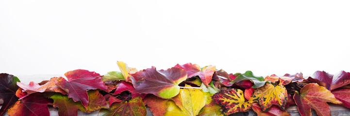 Panorama mit Herbstdekoration