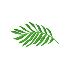 Bright green leaf of tropical plant. Natural decorative element. Flat vector design for promo poster or flyer