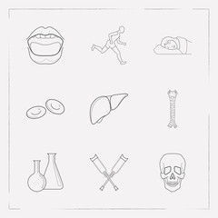 Set of anatomy icons line style symbols with trachea, crutches, chemical flask and other icons for your web mobile app logo design.