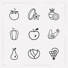 Set of dessert icons line style symbols with tomato, carambola, squash and other icons for your web mobile app logo design.