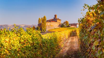 Photo sur Plexiglas Europe du Nord Langhe in Autunno, Piemonte, Italia