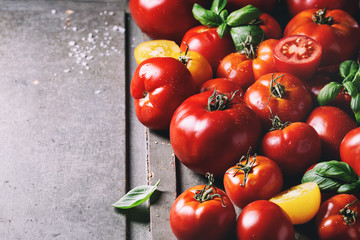 Variety of ripe fresh organic gardening tomatoes different kind and colors with water spot and basil leaves over old grey wooden background. Copy space