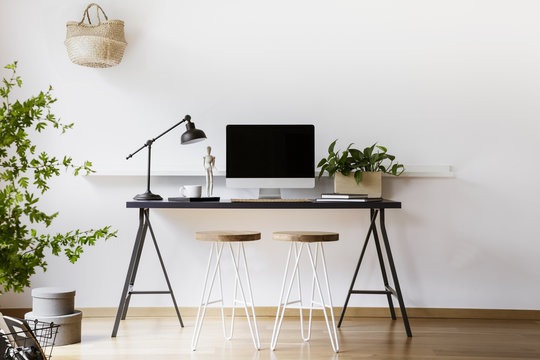 Two hairpin stools placed by black desk with metal lamp, fresh plant and mockup monitor in real photo of white living room interior with empty wall