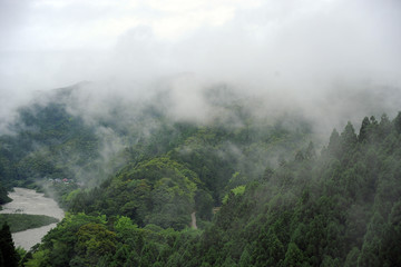 雨あがりの山