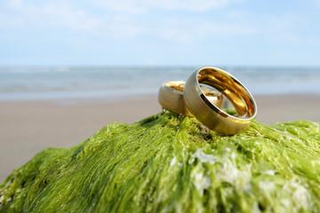Wedding rings at the beach