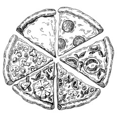 hand drawn illustration of pizza. six pieces