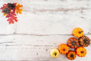 holiday of Halloween pumpkin background frame