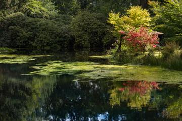 See Wasser Stadtpark